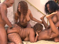 Is it dirty orgy involving superb ebony womans, such as Skyy Black, Beauty Dior, Cherokee D Ass..
