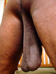 Big, saggy black nuts